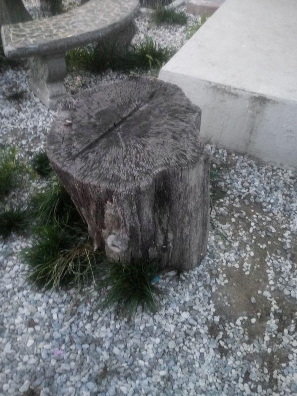 Free Wood Logs For Sale In San Bernardino Ca Offerup