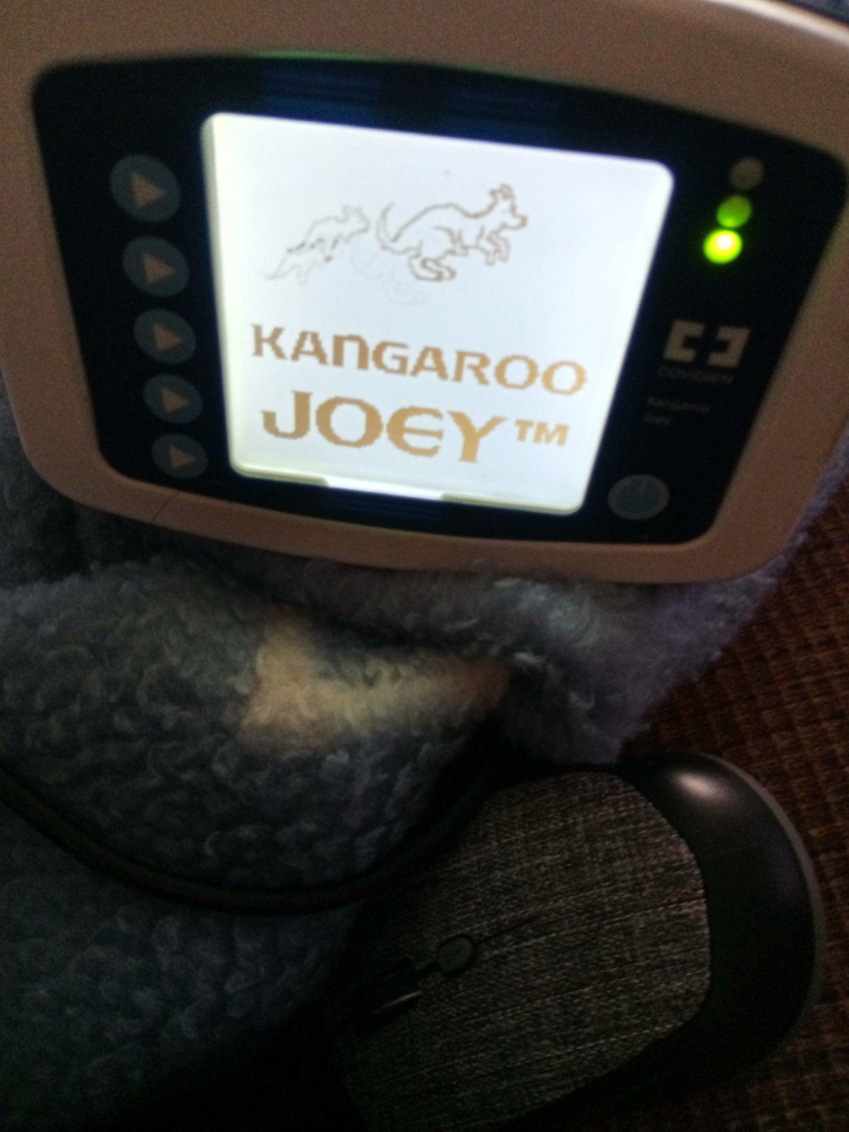 Kanagoo Josey feeding pump