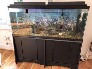 Aquarium for Sale in Silver Spring, MD