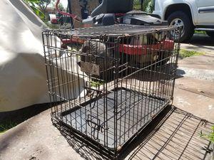 Pet Cage for Sale in Sanford, FL