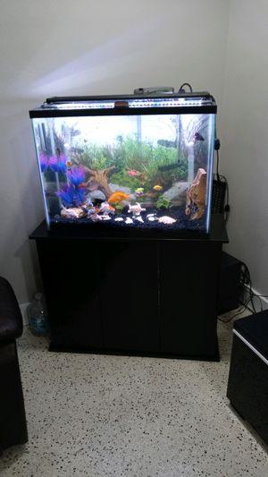 gallon circle aquarium sale miami fl offerup