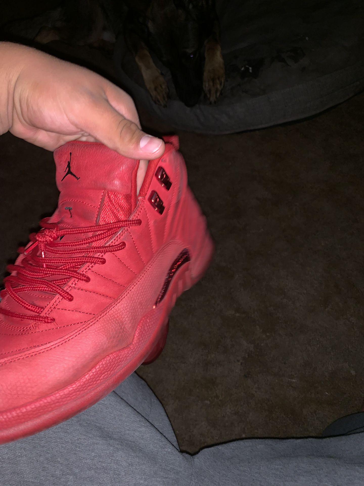 Size 12, Jordan 12s