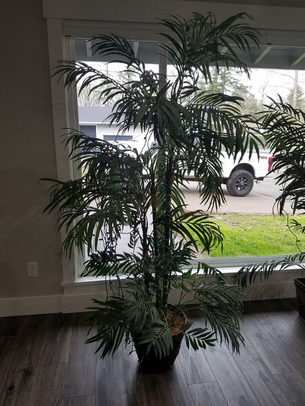 2 Fake House Plants Decor Purchased At Walmart For Sale In Salem