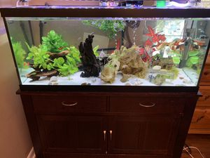 Fish tank, stand, filter, light and accessories 75 gallons / pecera, mueble, luces, filtro y accesorios for Sale in Gaithersburg, MD