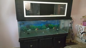 200 GALLON TANK W/ TURTLE TOPPER for Sale in Scottsdale, AZ