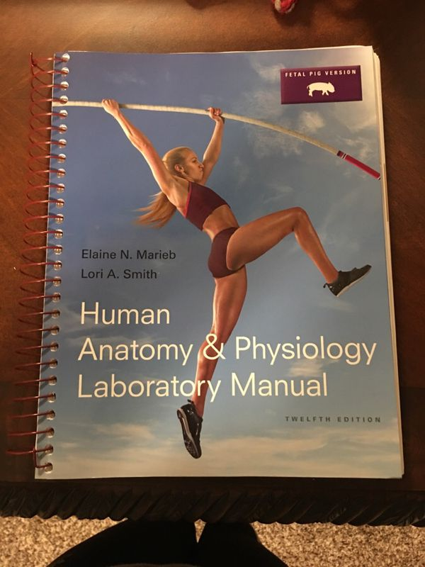 Human Anatomy & Physiology lab manual for Sale in Burien, WA - OfferUp