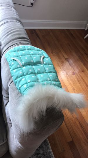Dog/Cat Jacket for Sale in Bryn Mawr, PA