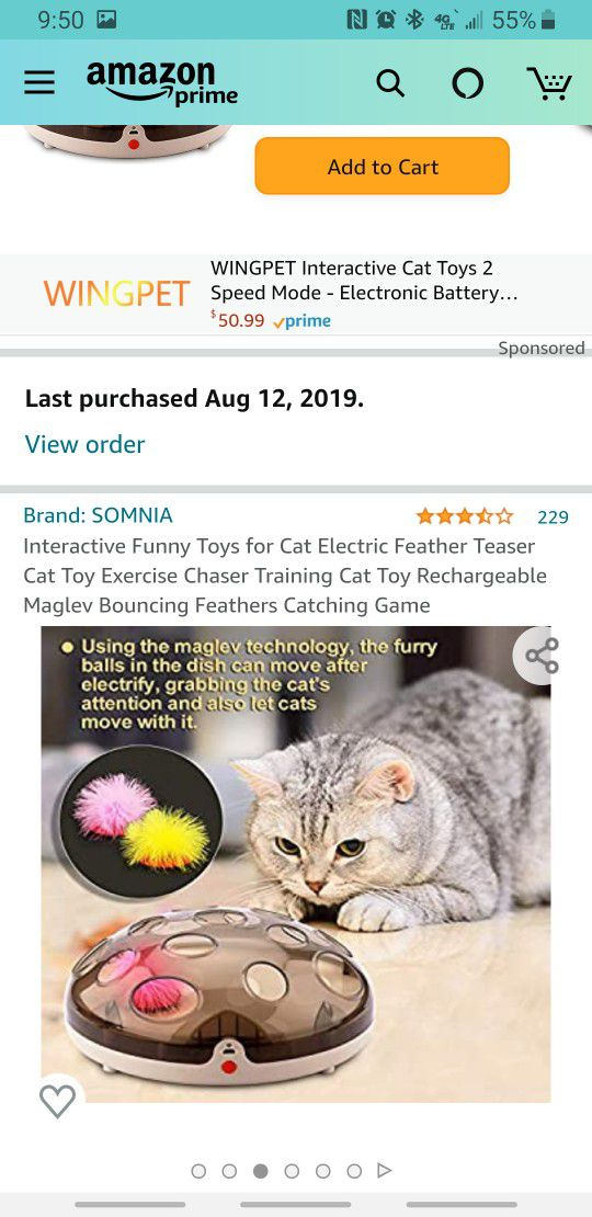 Interactive Funny Toys for Cat