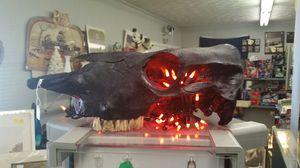 cow skull for Sale in Appomattox, VA