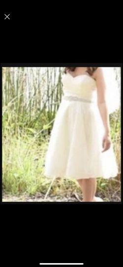 Wedding Belt  Thumbnail