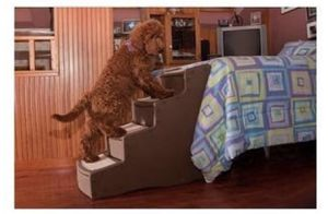 Pet Gear Easy Step IV Pet Stairs, 4-Step for Cats/Dogs, Portable/Lightweight, Sturdy for Sale in Washington, DC