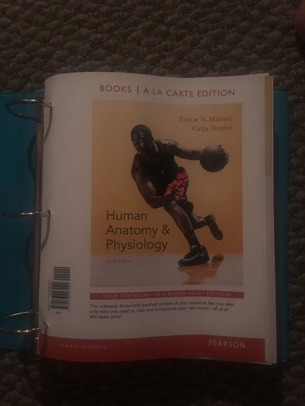 Human anatomy & physiology 10th edition (Books & Magazines) in ...