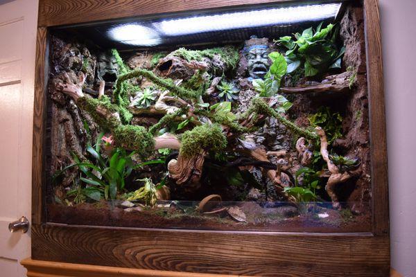 Custom Made Wooden Reptile Terrarium Vivarium Tank For