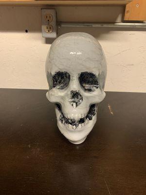 Photo Lighted Glass Skull