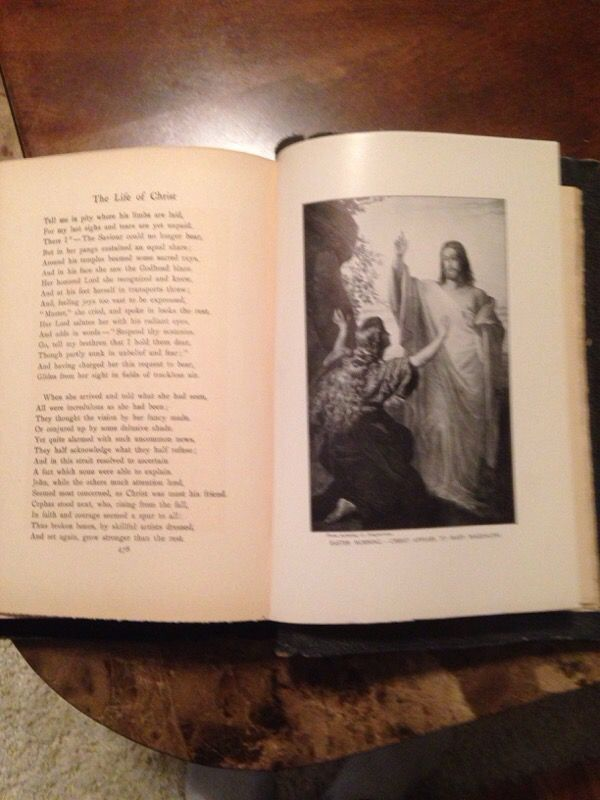 Book The Life of Christ 1900