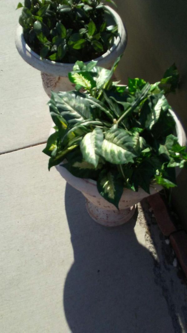 Plant Pots Pottery San Go Garden And Lawn Decor