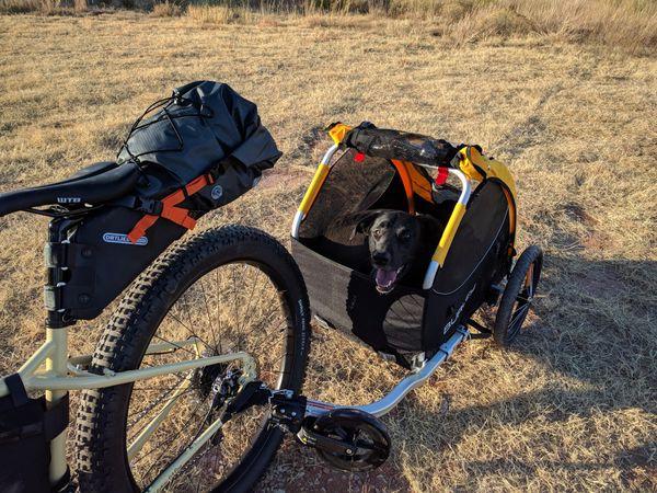 70f4d78cd60 Burley Tail Wagon (Bike Trailer for Dog) for Sale in Woodbridge, VA ...