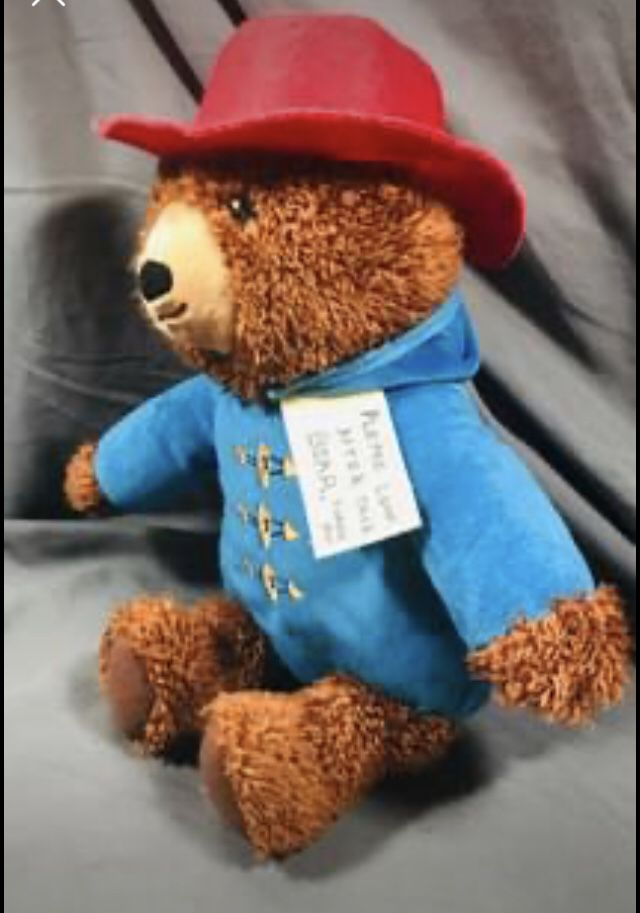 Paddington Bear Plush Toy New