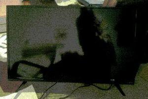 """32"""" vizio tv for Sale in Tampa, FL"""