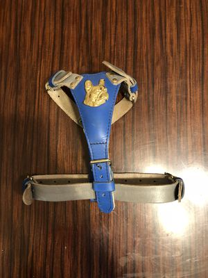 French bulldog collar / harness for Sale in Columbus, OH