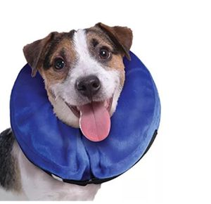 KONG Cloud E-Collar for Cats and Dogs Small for Sale in New York, NY