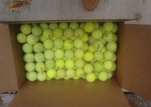 60 Tennis Balls in great shape for Sale in Dublin, OH