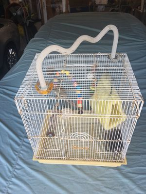 Bird Cage for Sale in Clermont, FL