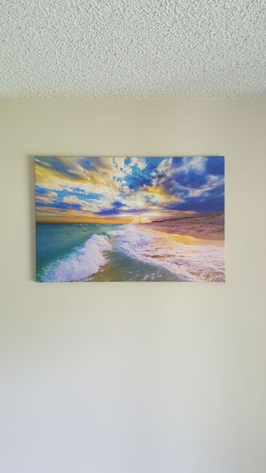 30 x 20 inch canvas for Sale in Tampa, FL