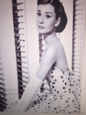 Audrey Hepburn Canvas Print for Sale in Washington, DC