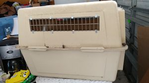 Dog crate medium size dog for Sale in Clermont, FL