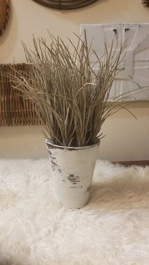 Faux Grass Plant white washed for Sale in Lincolnia, VA