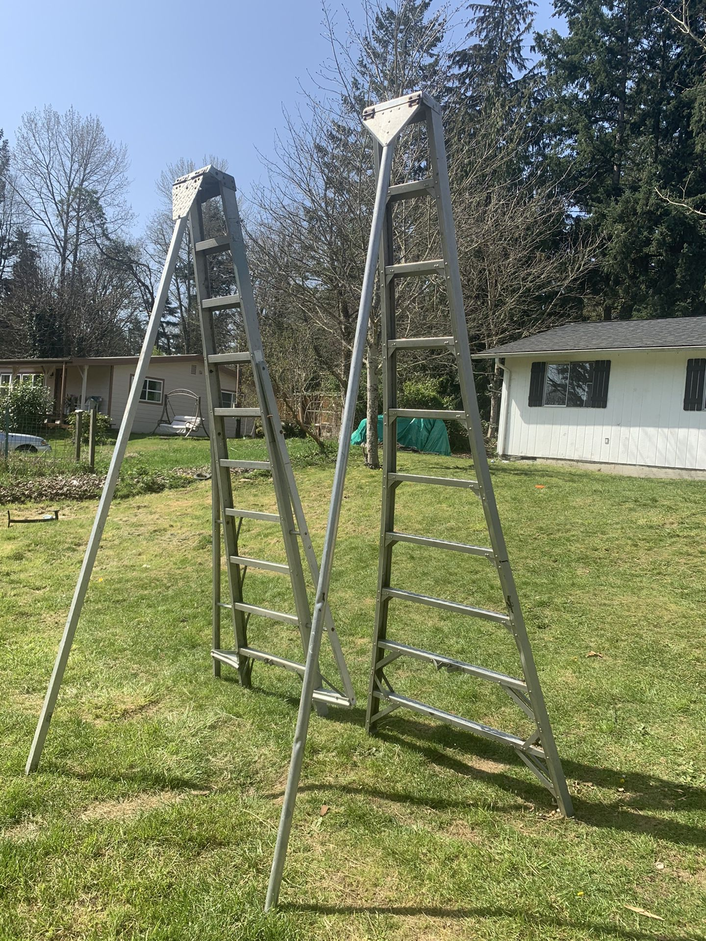 2 Long Ladder $175 And $200 Ladder OBO