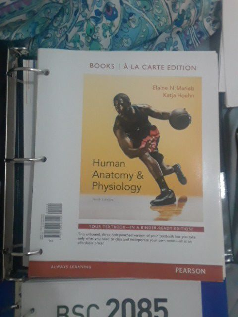 HCC Anatomy and Physiology Class and Lab Books for Sale in Plant ...