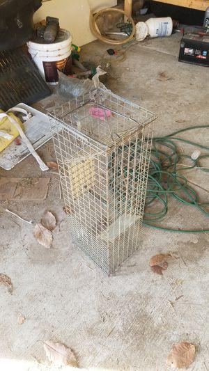 Critter trap for Sale in Blackwood, NJ