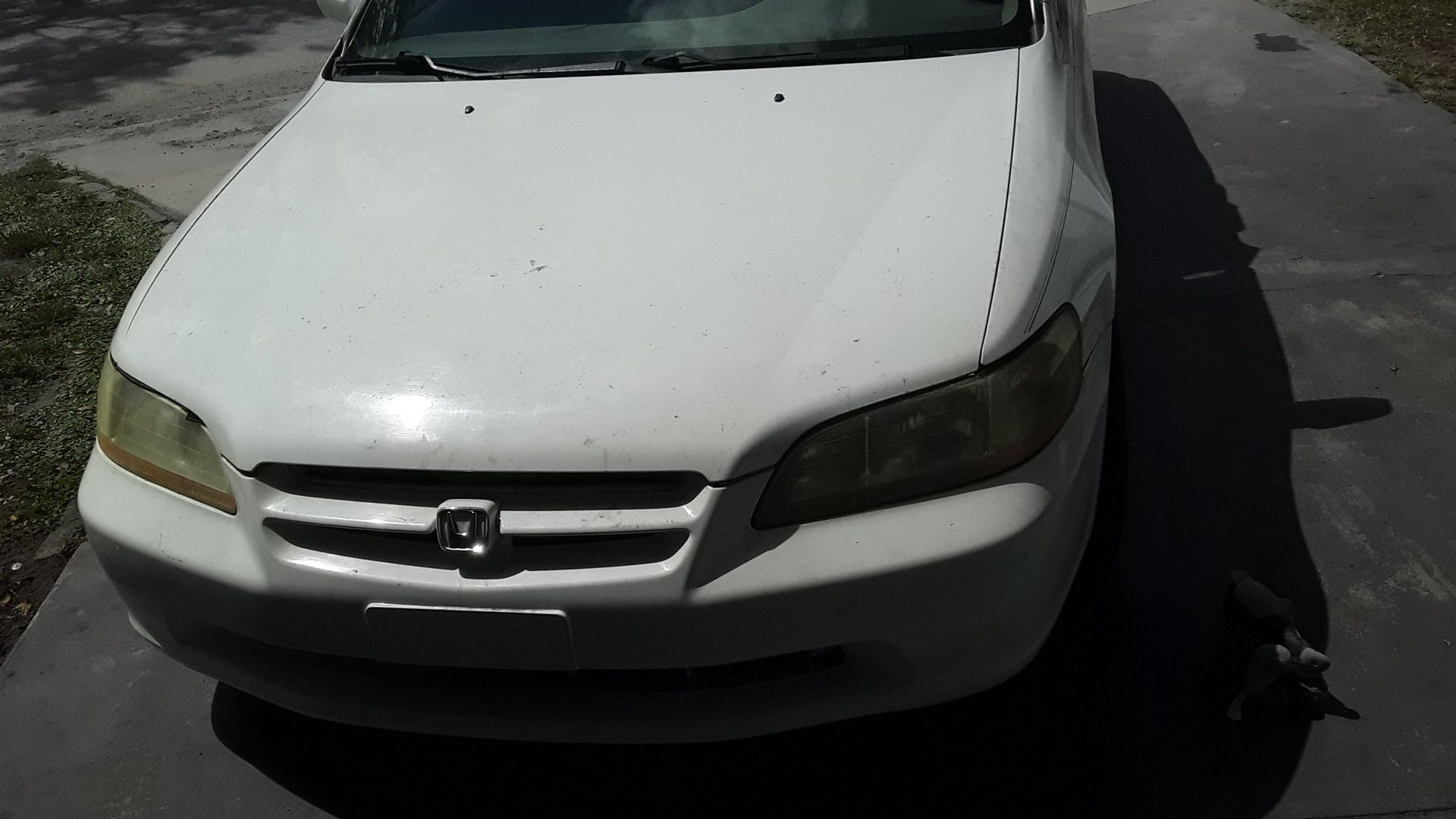 Need the money for now just got a tire damage and need batery but yhe other things are good