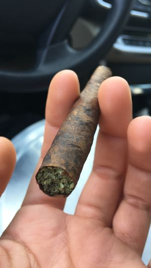 Backwoods for Sale in Dallas, TX