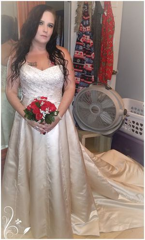 Beautiful Wedding Dress From Davids Bridals Size 12 For Sale In Pensacola