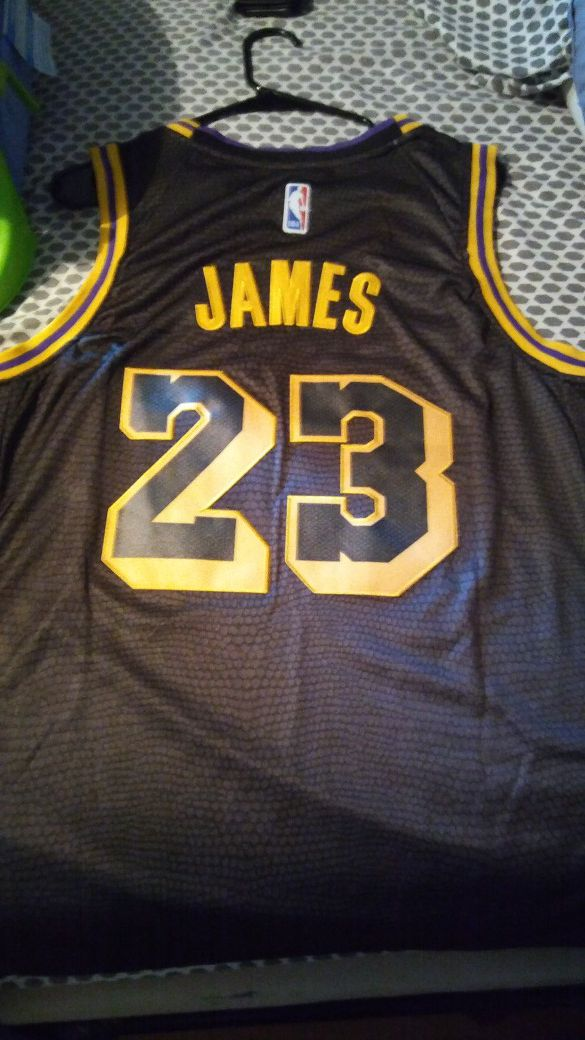 LeBron James LA Lakers Jersey size Large for Sale in Hampton af37163f2