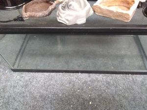 Reptile tank and accessories for Sale in Baldwin, MD