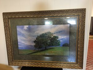 "Beautiful Gold Frame "" the tree"" Art for Sale in Frederick, MD"