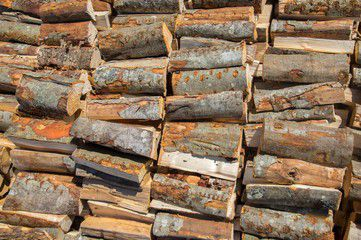 Firewood 1+ cord (truck and trailer)