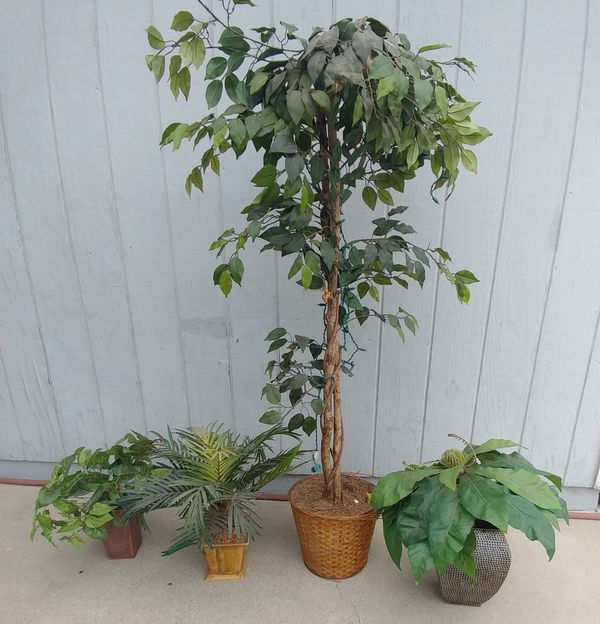 5.5 ft tall artificial plastic tree w 3 small fake plants w vases