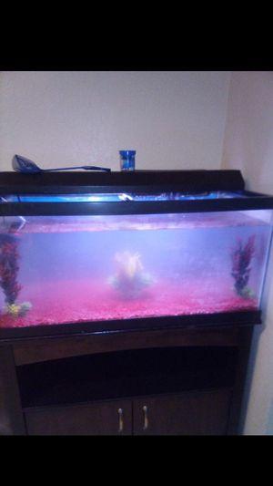 Photo Fish tank 45 gallon saltwater