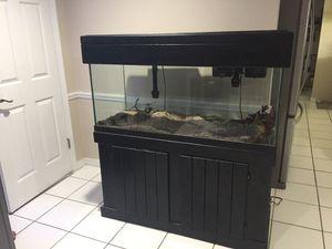Photo 75 gallon Aquarium