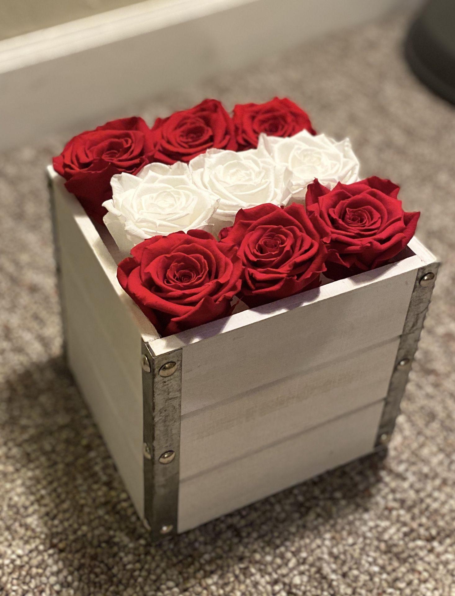 Roses preserved