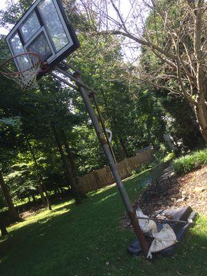 Lifetime adjustable portable basketball hoop system for Sale in Centreville, VA