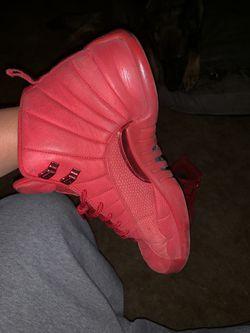Size 12, Jordan 12s Thumbnail
