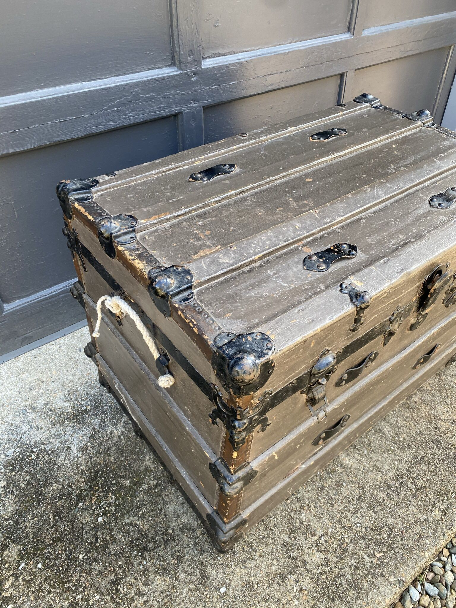 Gray painted trunk