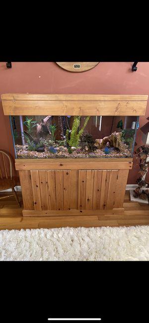 Photo 75 gallon fish tank