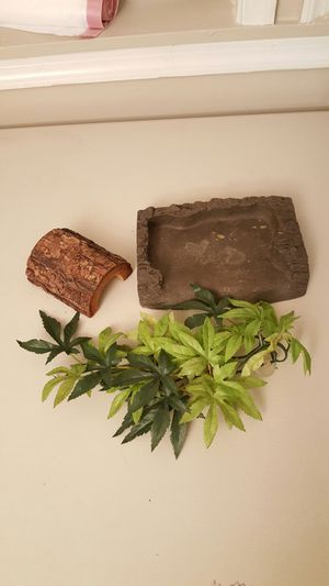 FREE Reptile tank accessories for Sale in Charles Town, WV